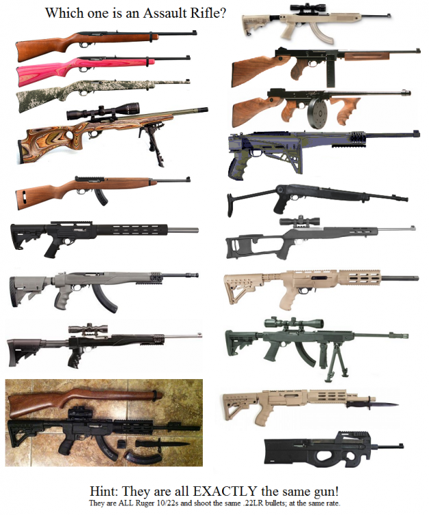 AssaultRifle_Ruger1022-2.png