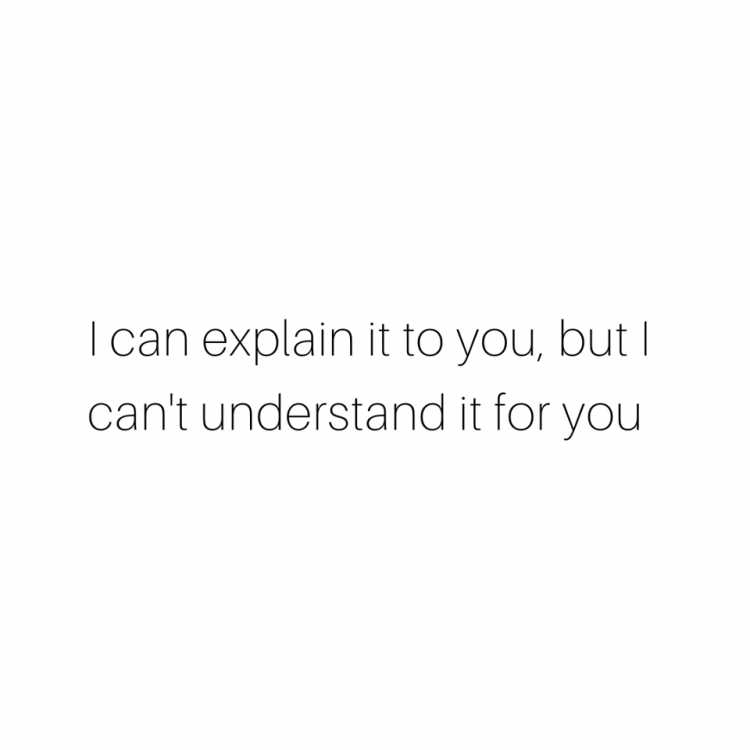 Can't Understand It for You.png